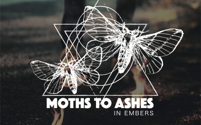 Moths to Ashes